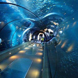 grand-akvarium-hurgada-cena.jpg